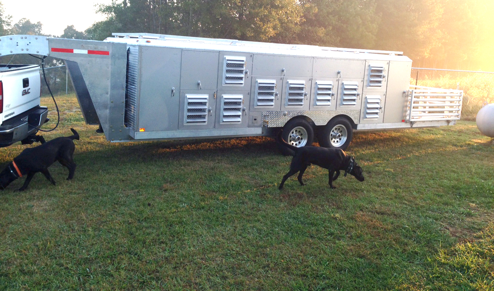 Dog-Trailer-big